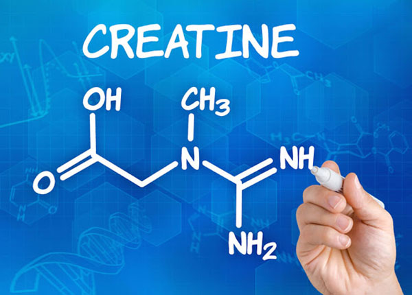Creatine được biết là tốt cho sức khỏe vậy lợi ích của nó là gì ?