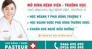 mo-hinh-benh-vien-truong-hoc-pasteur-1