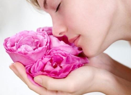 Gái ngành Y dùng hoa hồng chữa trầm cảm