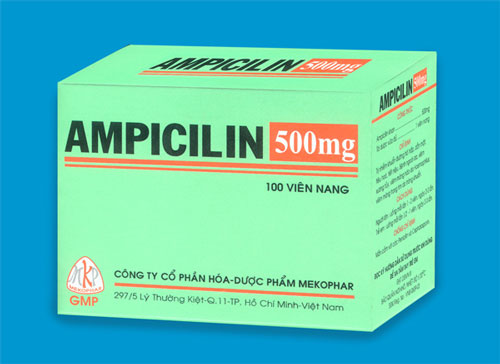 Sử dụng thuốc Ampicillin như thế nào để đúng cách?