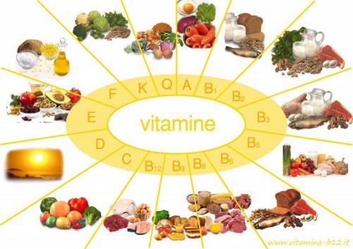 Vitamin và khoáng chất là chất xúc tác hỗ trợ quá trình trao đổi chất diễn ra bên trong cơ thể